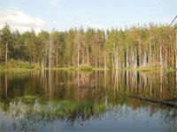 Молодежный проект о развитии экологического туризма в России